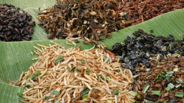 Gebratene Insekten, Street Food, Thailand – Video