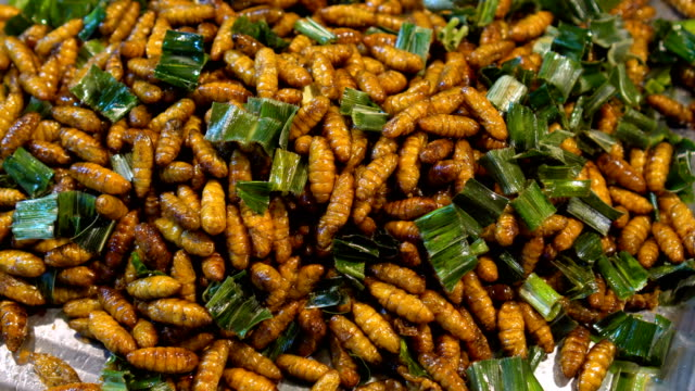 Fried insects - vídeo