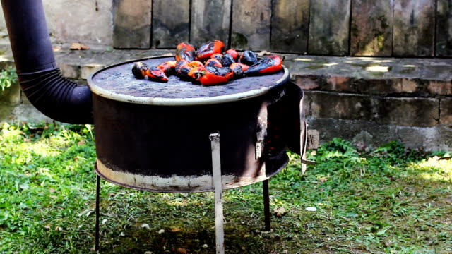 fritto su una griglia - paprica video stock e b–roll