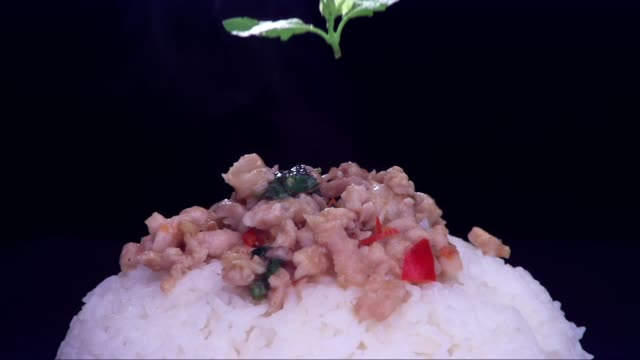 fried pork with basil leaves - thai food stock videos and b-roll footage