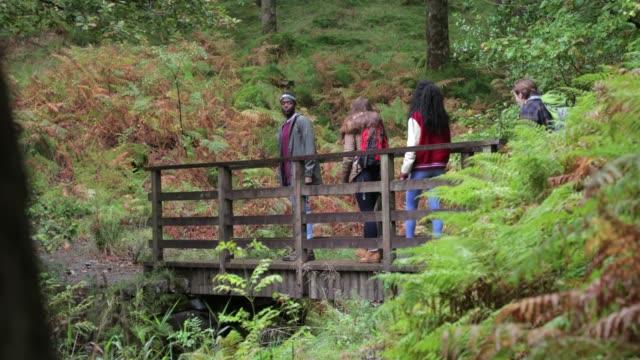 Friendly Hike Walking Along A Bridge video