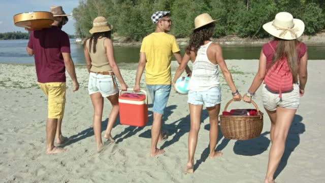 friends arriving at the beach - picnic stock videos and b-roll footage