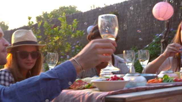 Amigos, soprando bolhas durante o piquenique no jardim - vídeo