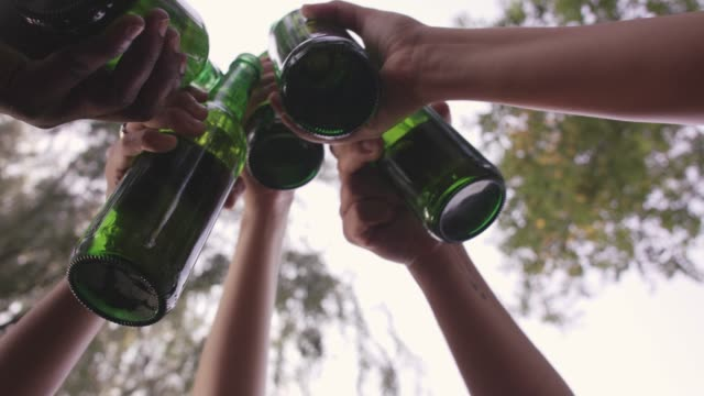 Friends cheering with beer during a picnic in the nature