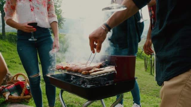 friends doing a bbq in the countryside together - garden party stock videos and b-roll footage