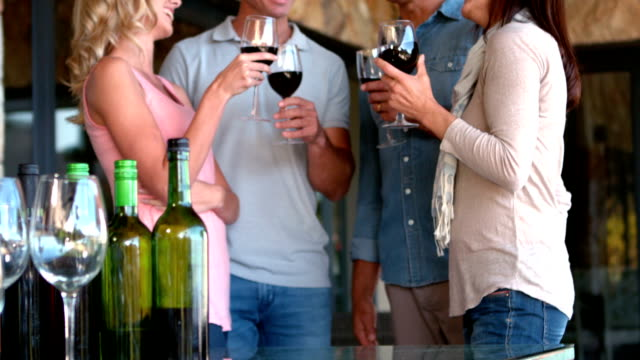 Friends enjoying red wine together in slow motion video