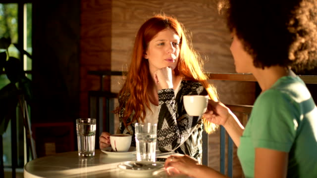 friends have a talk in cafe - montaggio in sequenza video stock e b–roll