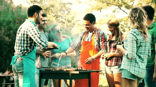 Friends having a barbecue party in nature video
