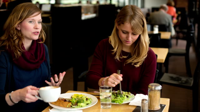Friends having lunch Two young woman having a healthy lunch in a restaurant girlfriend stock videos & royalty-free footage