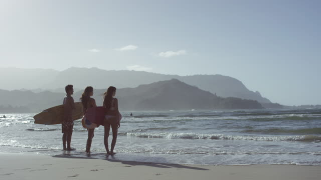 Friends heading out to surf on a tropical beach vacation to Hawaii video