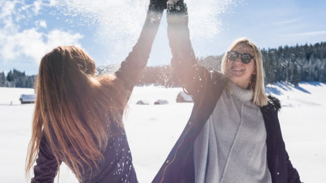 Friends high fiving in winter landscape video