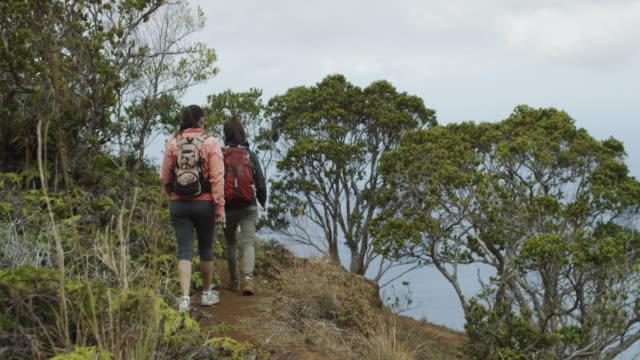 在夏威夷的 na pali 海岸徒步旅行的朋友 - 州立公園 個影片檔及 b 捲影像