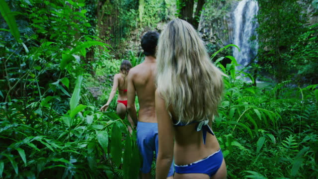 Friends Hiking to Jungle Waterfall video