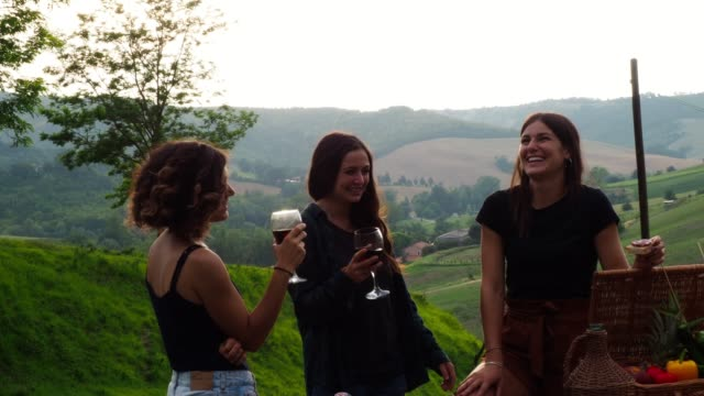 Friends making a toast during a barbecue Friends making a toast during a barbecue in the coutryside winetasting stock videos & royalty-free footage