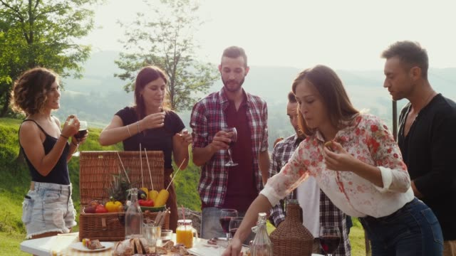 Friends making an aperitif during a barbecue Friends making an aperitif during a barbecue in the coutryside aperitif stock videos & royalty-free footage