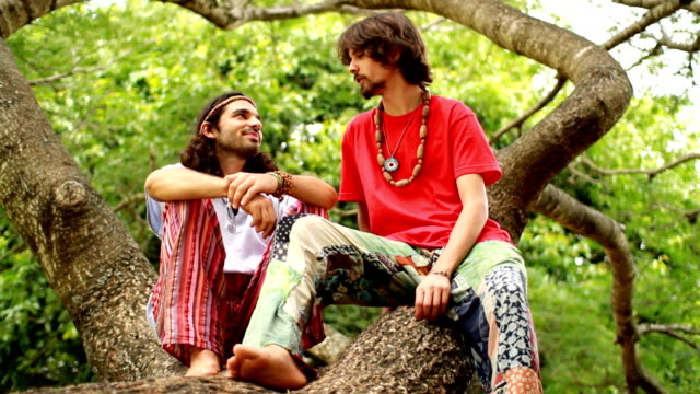 Friends on a tree Two neo-hippies sitting on a tree and talking. Shot with Prime Lens at 50mm for selective focus. FULL HD. Alternative shots in portfolio. hippie stock videos & royalty-free footage
