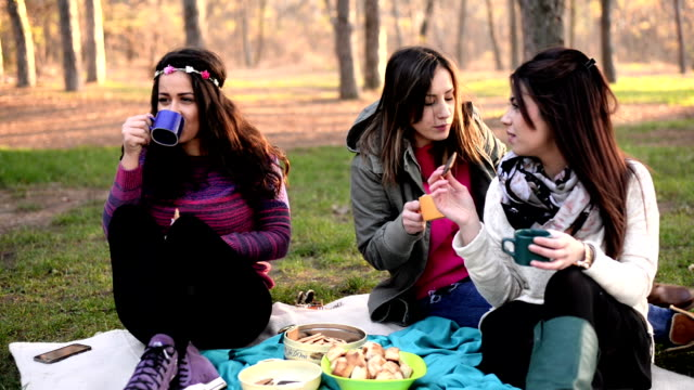 Friends on picnic video