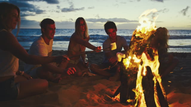 Friends Relaxing at Bonfire Beach Party - video