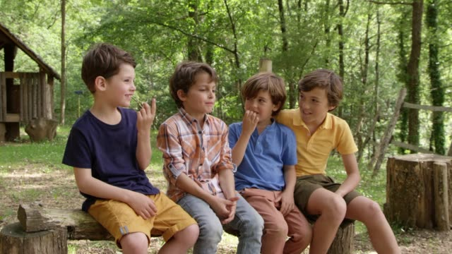 Friends Talking While Sitting On Log In Forest Dolly shot of boy talking to friends while sitting on log. Kids are spending leisure time in forest. They are wearing casuals. boys stock videos & royalty-free footage