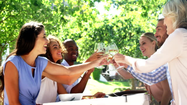 Friends toasting glasses of wine at restaurant video