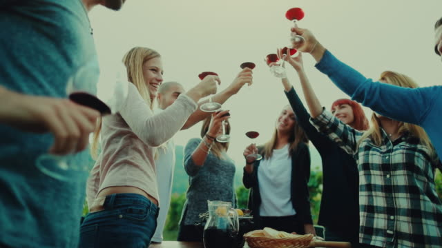 Friends together enjoy meal and red wine: up the glasses video
