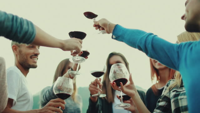 Friends together enjoy meal and red wine: up the glasses Friends together enjoy meal and red wine in Italy red wine stock videos & royalty-free footage