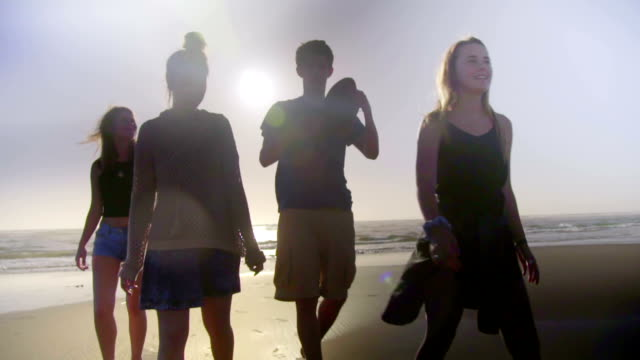 Friends walk on beach video