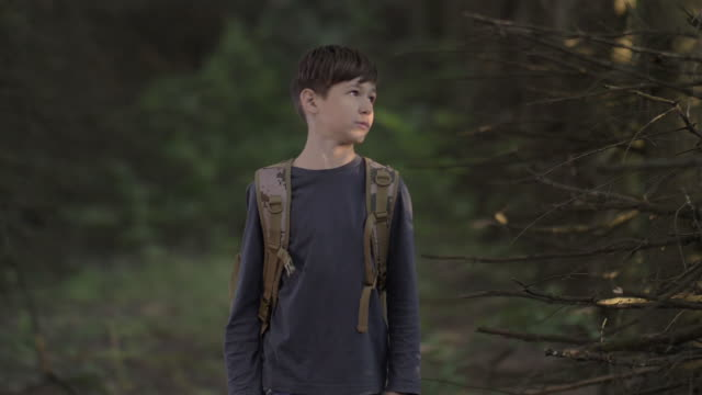 vídeos de stock e filmes b-roll de frightened boy walks through a terrible dry forest in the evening looks around slow motion - criança perdida