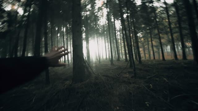 vidéos et rushes de pov homme apeuré courir dans la forêt. - danger