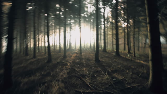 POV Frightened person running in the forest
