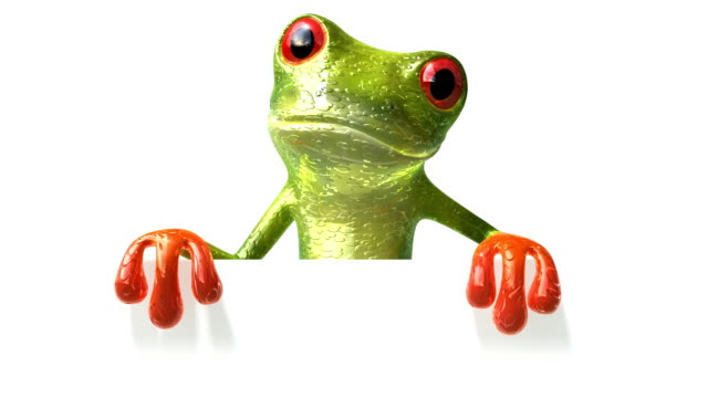 Frog with a blank sign  /file_thumbview_approve.php?size=1&id=21507720 amphibian stock videos & royalty-free footage