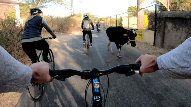 POV from bicyclist handlebars looking towards fellow bicyclists