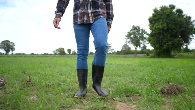 Front of Farmer goes in rubber boots on a green field - video