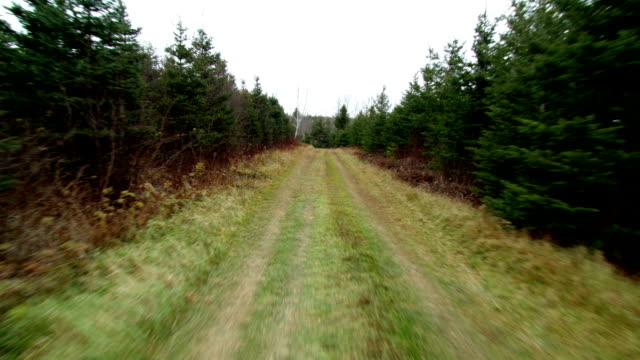 Front POV View from a Vehicle on a Dirt Road video