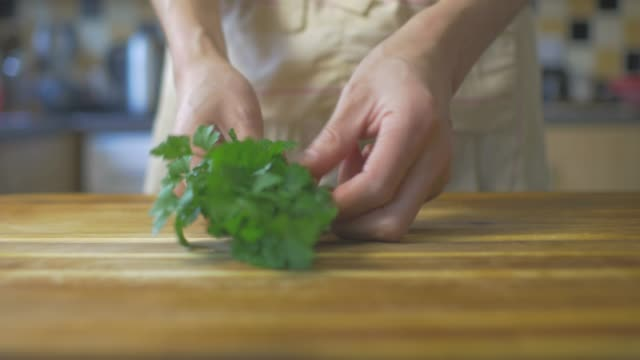 front view of hand pick fresh parsley in the kitchen