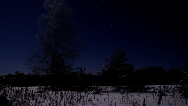 Frosty night panorama video