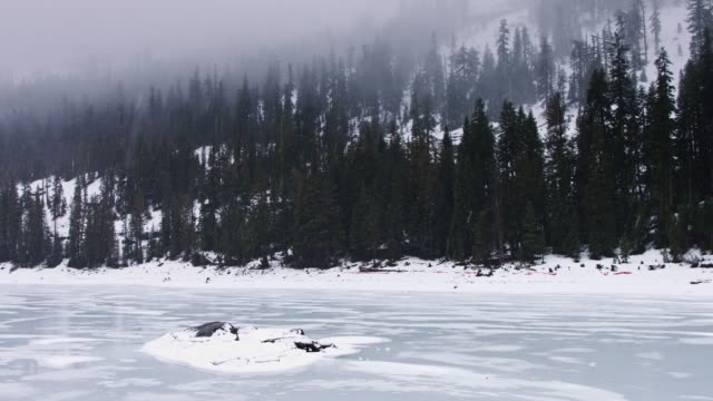 Frozen Caples Lake in the Sierras Winter in the Sierra Nevada Mountains, California. Slow motion shot of snow falling on a frozen lake, surrounded by trees. frozen stock videos & royalty-free footage
