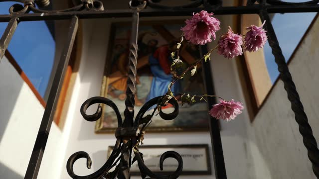 Frozen flowers at the religious chapel