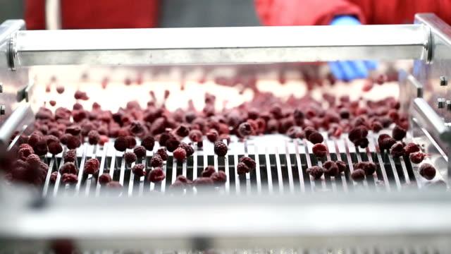 frozen food industry - замороженные продукты стоковые видео и кадры b-roll