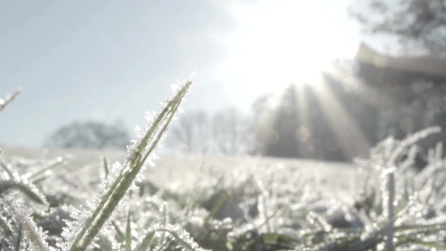 冷凍接地 - 霜点の映像素材/bロール