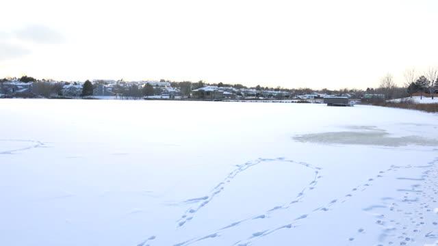 Frozen Lake View video
