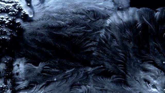 fryst mönster täcker den mörka bakgrunden - is bildbanksvideor och videomaterial från bakom kulisserna