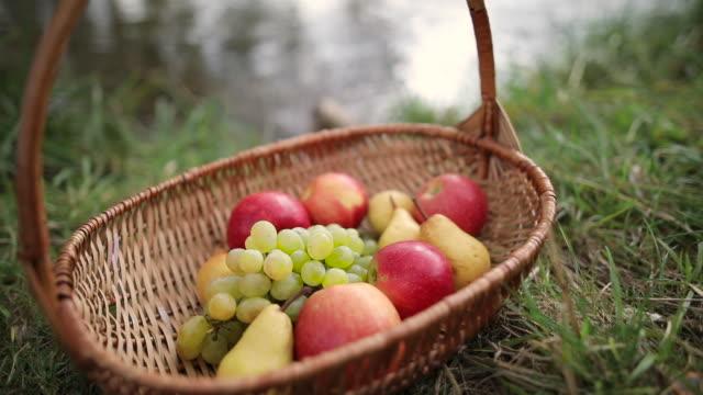 vídeos de stock e filmes b-roll de fruit basket - saladeira