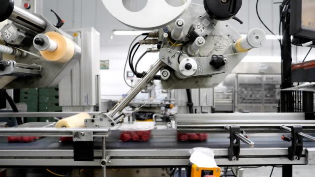 temiz folyo ve süpermarketler için etiketler koymak için modern otomatik makine ile meyve çiftliği. - gıda ve i̇çecek sanayi stok videoları ve detay görüntü çekimi