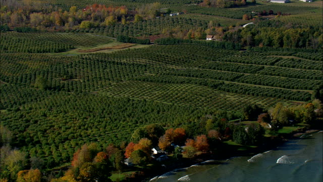 Fruit Farms  - Aerial View - New York,  Wayne County,  United States video