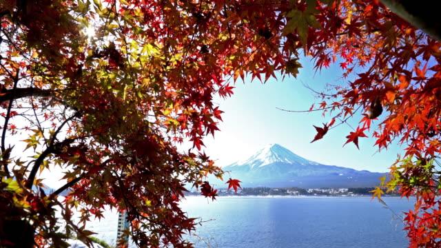 河口湖山梨県で紅葉秋の富士山 - 秋点の映像素材/bロール
