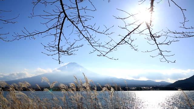 hd : fujisan kawaguchiko 湖の風景 - 冬点の映像素材/bロール