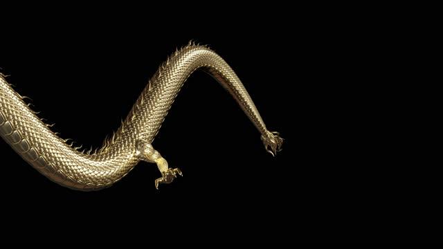 pełne ciało złoty smok przenieść do przodu animacji z animacji renderowania 3d obejmują ścieżkę alfa. - smok postać fikcyjna filmów i materiałów b-roll