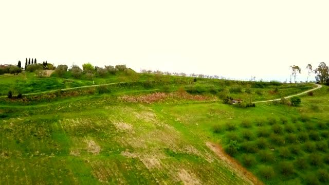 full HD italian countryside , green hills video