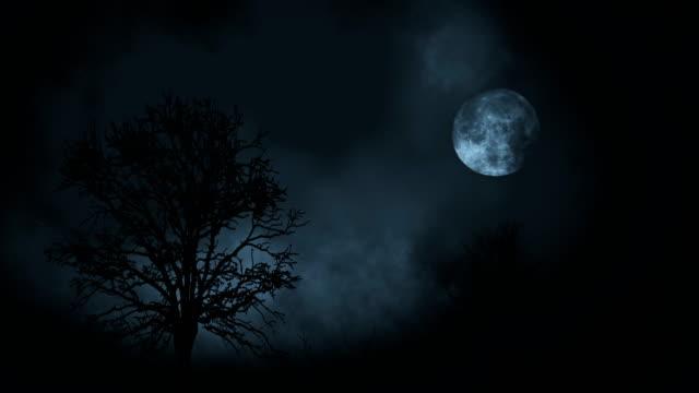vídeos de stock, filmes e b-roll de lua cheia à noite crescente entre a floresta de árvores com nuvens - horror